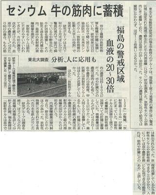 20111112nikkei.jpg