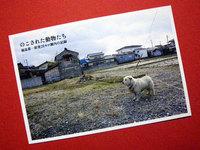 postcard-red.jpg